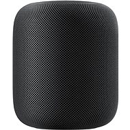 Apple HomePod Space Gray - Hlasový asistent