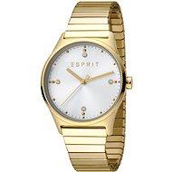 ESPRIT VinRose Silver Gold Polish 2990 - Dámské hodinky