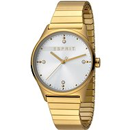 ESPRIT VinRose Silver Gold Matt 2990 - Women's Watch