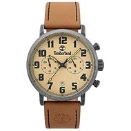 TIMBERLAND model RICHDALE TBL15405JSQS07 - Men's Watch