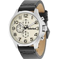 TIMBERLAND model ALDEN TBL14524JS07P - Men's Watch
