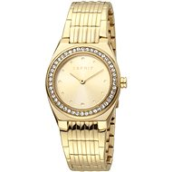ESPRIT Spot Champagne Gold MB ES1L148M0065 - Dámské hodinky