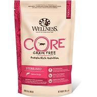 Wellness Core Cat Sterilized Salmon 300g