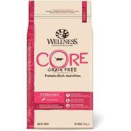 Wellness Core Cat Sterilized Salmon 10kg