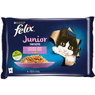 Felix Fantastic Junior s kuřetem a lososem v želé 4 x 85 g - Kapsička pro kočky