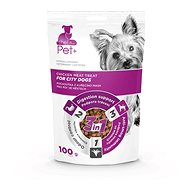 ThePet+ Dog City Treat 100g - Dog Treats