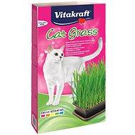 Pamlsky pro kočky Vitakraft Cat Gras tráva 120 g