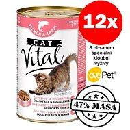 Konzerva Cat Vital 47% masa losos + pstruh 12 × 415 g - Konzerva pro kočky