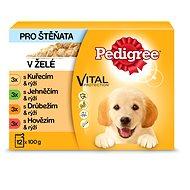 Kapsička pro psy Pedigree Junior výběr ve šťávě 12 x 100g - Kapsička pro psy