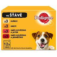 Kapsička pro psy Pedigree Adult výběr ve šťávě 12 x 100g - Kapsička pro psy