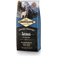 Carnilove salmon for adult 12kg - Granule pro psy