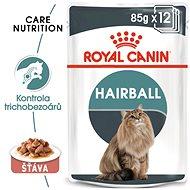 Kapsička pro kočky Royal Canin Hairball Care Gravy 12 × 85 g