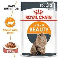 Kapsička pro kočky Royal Canin Intense Beauty Gravy 12 × 85 g