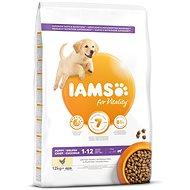 IAMS Dog Puppy Large Chicken 12kg - Granule pro štěňata