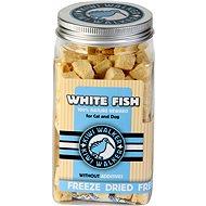 Kiwi Walker Freeze-dried Fish Meat, 60g - Dog Treats