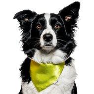 Chiweto Jackie L, zelená neon - Šátek pro psy