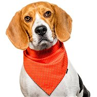 Chiweto Dotty M, Orange, Polka Dots - Dog Scarves