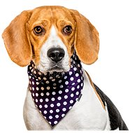 Chiweto Besi S, Dark Blue, Polka Dots - Dog Scarves