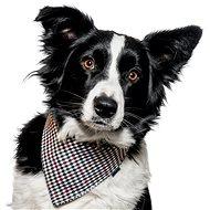 Chiweto Deluxe Ben L, kostka - Šátek pro psy