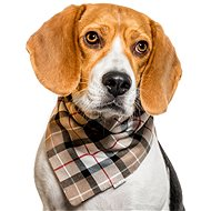 Chiweto Jessy M, Beige Blocks - Dog Scarves