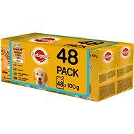 Kapsička pro psy Pedigree Vital Protection kapsička pro štěňata masový výběr s rýží v želé 48 × 100 g