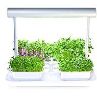 Microgreens by Leaf Learn Mini - Chytrý květináč