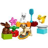 LEGO DUPLO Town 10838 Domácí mazlíčci - Stavebnice