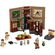 LEGO 76384 Harry Potter Hogwarts™ Moment: Herbology Class