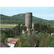 Výlet na oběd v levandulovém údolí s návštěvou hradů Točník a Žebrák - Voucher - rodina a zábava