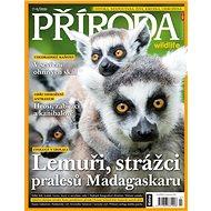 Příroda Wildlife - vydávání titulu bylo ukončeno - Digital Magazine