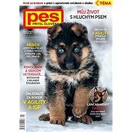 Pes přítel člověka - Elektronický časopis