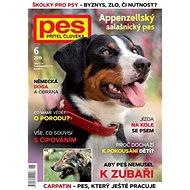 Pes přítel člověka - 6/2019 - Elektronický časopis