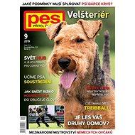 Pes přítel člověka - 9/2019 - Elektronický časopis