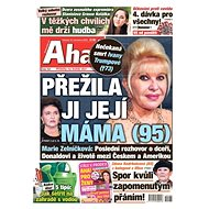 AHA! - Electronic Newspaper