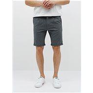 Lindbergh Grey Shorts - Shorts