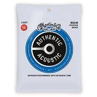 MARTIN Authentic SP 92/8 Phosphor Bronze Light - Struny