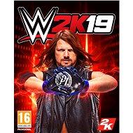 WWE 2K19 (PC) DIGITAL - Hra na PC