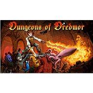 Dungeons of Dredmor (PC) DIGITAL - Hra pro PC