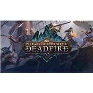 Pillars of Eternity II: Deadfire - Obsidian Edition (PC) DIGITAL - Hra pro PC