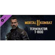 Mortal Kombat 11 Terminator T-800 (PC) Klíč Steam