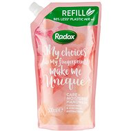 RADOX Anti-Bacterial Care+ Moisturize Hand Wash Refill 500ml - Liquid Soap