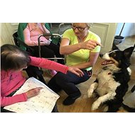 Dog therapists for people with Alzheimer's disease - Charity Project