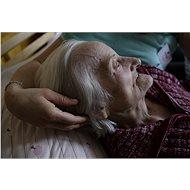 NEJSTE SAMI – mobilní hospic - Mobilní specializovaná paliativní péče pro dospělé a děti - Charitativní projekt