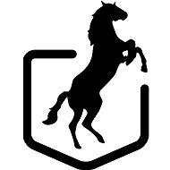 Černí koně - Charitativní projekt