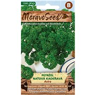 Curly parsley ASTRA - Seeds