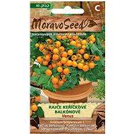 Semena Rajče keříčkové balkónové VENUS, oranžové - Semena