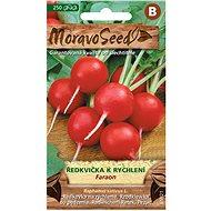 Semena Ředkvička k rychlení FARAON, kulatá červená - Semena