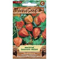 Semena Mochyně - Židovská třešeň, oranžová - Semena