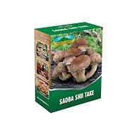 Shii take 250ml - Wood-Decay Fungi