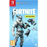 Fortnite: Deep Freeze Bundle - Nintendo Switch - Hra pro konzoli